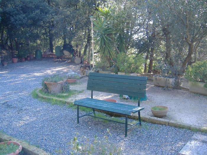 Costruzione di cordoli in tufo per il nostro giardino for Arco per rampicanti fai da te