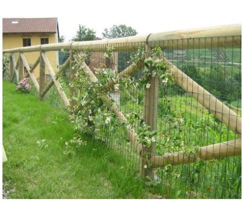 Recinzioni in pali e filagne di legno durature nel tempo for Recinzione per cani da esterno