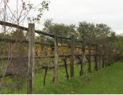 Detrazione recinzione terreno