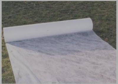 Come proteggere le fondazioni dall'umidità di risalita.