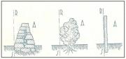 Vari tipi di recinzioni dei fondi. Art. 841 del c.c.