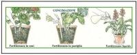 Diversi modi di concimare una pianta 1