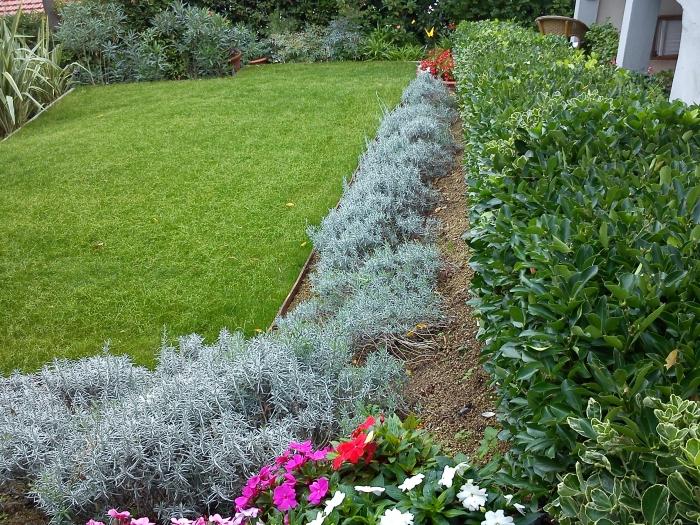 Come ricavare un bel giardino da un modesto terreno in - Vialetti da giardino ...