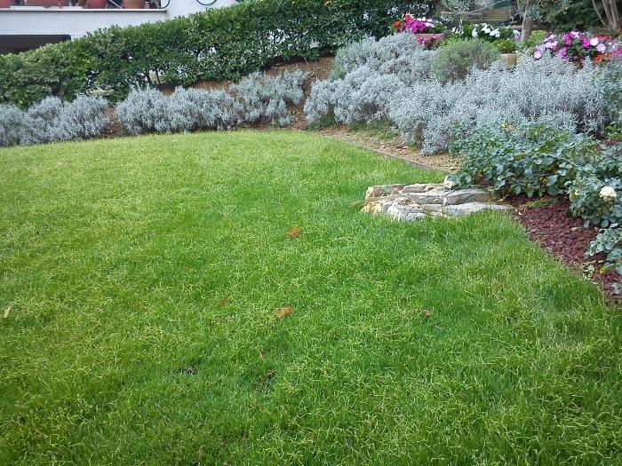 Come ricavare un bel giardino da un modesto terreno in - Idee giardino in pendenza ...