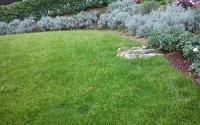 Come ricavare un bel giardino da un modesto terreno in pendenza.