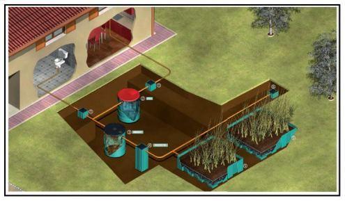Fitodepurazione a flusso orizzontale per lo smaltimento for Fossa biologica a dispersione