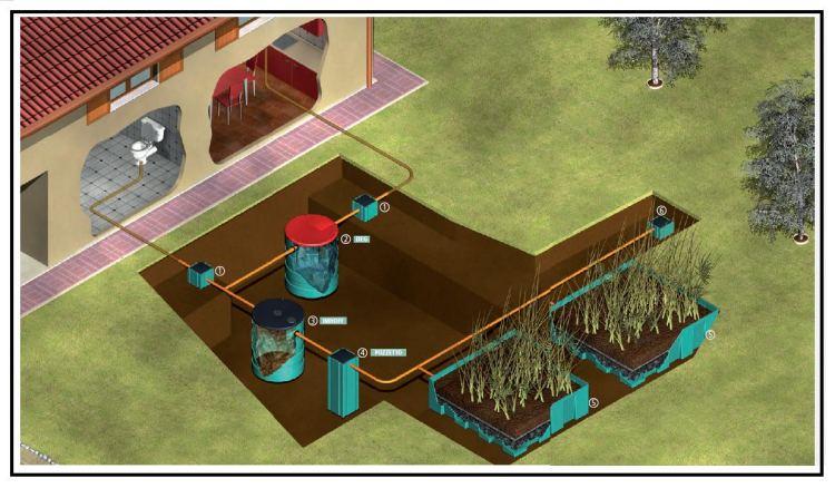 Fitodepurazione a flusso orizzontale per lo smaltimento for Vassoi assorbenti