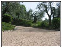 Pavimentazione viale 1