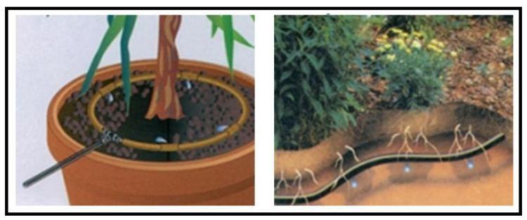 Impianti di irrigazione a goccia come fare for Irrigazione a caduta
