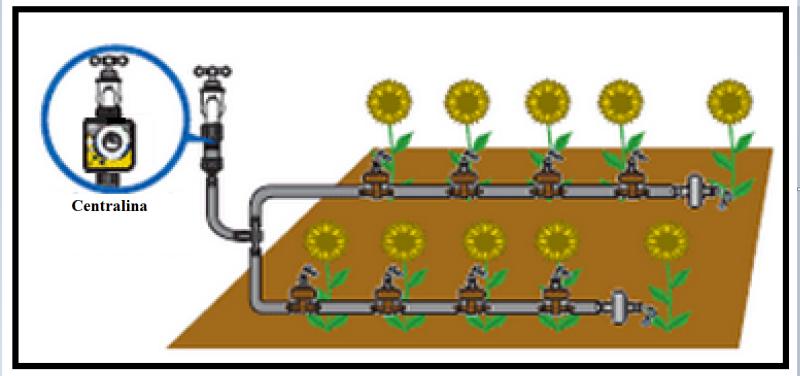 Irrigazione a goccia o ad ala gocciolante per giardini e orti for Irrigazione a caduta