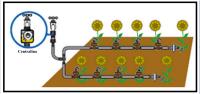 Irrigazione a tubo gocciolante 1
