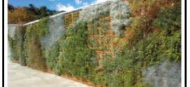 Come creare il verde su pareti verticali e  recinzioni