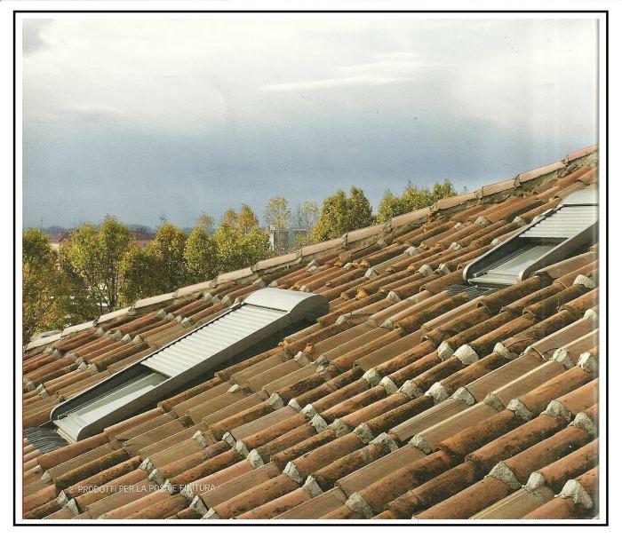 Posa di una finestra velux per tetti for Velux tetto