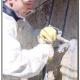 A Un consolidamento e rinforzo strutturale murature con iniezione di legante