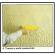 Rifinire le nostre stanze di abitazione con rivestimenti strutturati