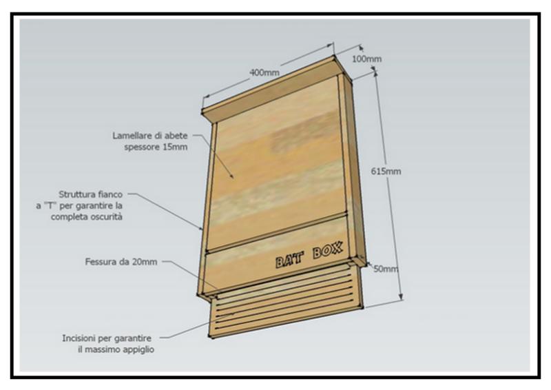 Una casetta per pipistrelli contro le zanzare tigri for Progetto casa fai da te