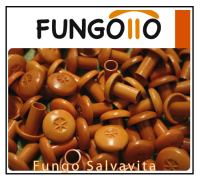 Fungotto salvavita 1