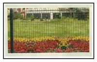 Installazione di recinzione perimetrale con rete a maglie di acciaio 1