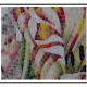 A Mosaici realizzati da artisti del mestiere