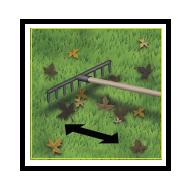 15 Raccolta delle foglie 1 1
