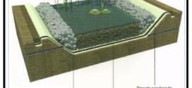 Un telo idoneo per realizzare fitodepurazioni con le piante