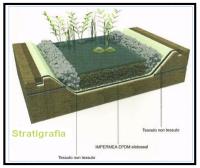 un-telo-idoneo-per-realizzare-fitodepurazioni-con-le-piante1