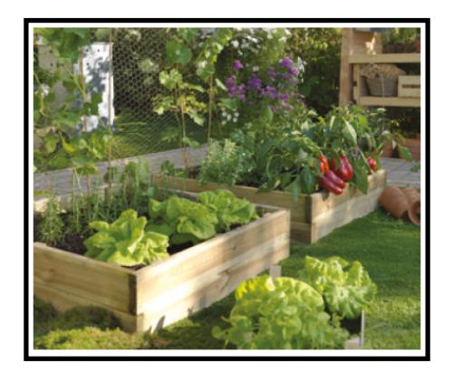 - Realizzare un giardino ...