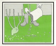 Fertilizzazione 1