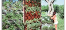 Una rete verticale che offre piccole zone nei suoi incavi per le radici delle piante